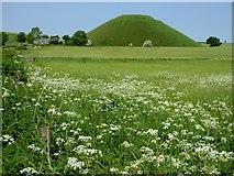 SU1068 : Silbury Hill by Oliver Dixon