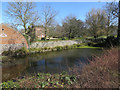 TG1735 : Pond by Thurgarton Hall by Hugh Venables