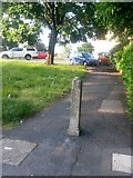 SZ0795 : Northbourne: footpath E38 to Gillam Road shops by Chris Downer