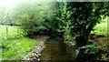 SO2821 : The Grwyne Fawr at Pont Esgob, 1 by Jonathan Billinger