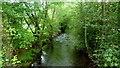 SO2821 : The Grwyne Fawr at Pont Esgob, 2 by Jonathan Billinger