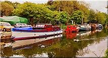 SE2336 : Abbey Pride,  Fallwood Marina, Pollard Lane, Leeds And Liverpool Canal,  Leeds by Mark Stevenson