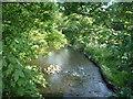 NZ2442 : River Browney, Aldin Grange by JThomas