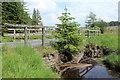 NX4095 : Bridge over Water of Girvan by Billy McCrorie