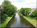 SP0394 : View north west-Tame Valley Canal, West Midlands by Martin Richard Phelan