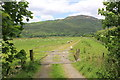 SH6918 : View from the Mawddach Trail by Jeff Buck
