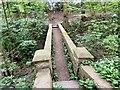 SJ9493 : Stone footbridge at Pole Bank by Gerald England