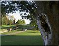 SK3622 : A road near Calke Abbey, Ticknall by Oliver Mills