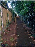 SZ0795 : Northbourne: footpath E41 towards Hill View Road by Chris Downer