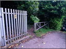 SZ0795 : East Howe: entering Puck's Dell from footpath E39 by Chris Downer