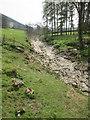 SE1075 : River  Nidd  gone  underground  south  of  Dry  Wath by Martin Dawes
