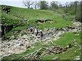 SE1075 : Crossing  River  Nidd  at  Dry  Wath  (ford) by Martin Dawes