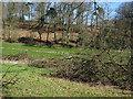 TG1639 : Hill Plantation by Hugh Venables