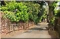 SX9063 : Path, Chelston by Derek Harper