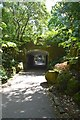 "SS5017 : The ""Underpass"", RHS Garden Rosemoor by John Myers"