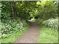 SE4048 : Cycle Way - Barleyfields Road by Betty Longbottom