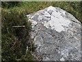 NF6903 : Rivet on rock, Loch an Dùin, Barra by Becky Williamson