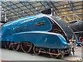 SE5951 : Mallard, York Railway Museum York, Yorkshire by Christine Matthews