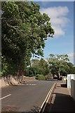SX9065 : St Vincent's Road, Torre by Derek Harper