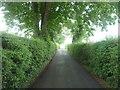 SJ7978 : Road (bridleway) to Warford Grange Farm by JThomas