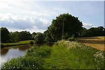 SJ6641 : Shropshire Union Canal above Audlem locks by Christopher Hilton