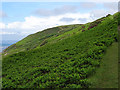 SN4461 : On the Wales Coastal Path by John Lucas