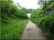 SK0296 : Padfield Main Road crosses the Trans Pennine Trail by Raymond Knapman