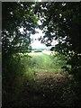 TL2848 : Towards Tadlow by Dave Thompson