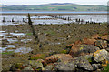 NS3574 : Port Glasgow Timber Ponds by Thomas Nugent