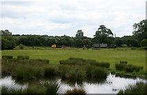 SJ9928 : Amerton Railway - looking across a wet area to stored stock by Chris Allen