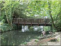 TL3514 : Park near River Lea, Ware, Hertfordshire by Christine Matthews