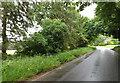 TL9282 : C147 Rushford Road, Rushford by Adrian Cable