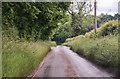 TG0412 : Mill Road near Clippings Green by J.Hannan-Briggs