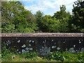 NS3585 : Auchentullich Bridge: east parapet by Lairich Rig