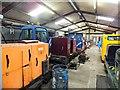 SH5739 : Narrow gauge locomotives awaiting restoration by Richard Hoare