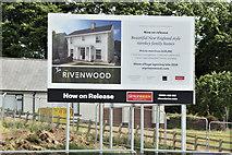 J5174 : Rivenwood, Newtownards - June 2016(2) by Albert Bridge