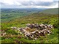 NY3433 : Ruined sheepfold by Mick Garratt