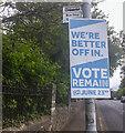 J3271 : 2016 EU Referendum poster, Belfast by Rossographer