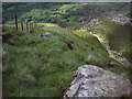 SK0798 : Wildboar Clough by Stephen Burton