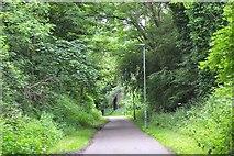 NT2273 : North Edinburgh Cycleway near Roseburn by Jim Barton