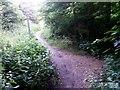 SZ0796 : Kinson: footpath E47 crosses footpath E46 by Chris Downer
