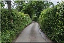 SK1446 : Stanton Lane by Peter McDermott