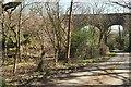 SX1365 : Penadlake Viaduct by Derek Harper