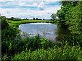 TA1102 : Pond near Hundon Manor by Andy Stephenson
