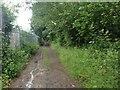 TQ6041 : Home Farm Lane, Tunbridge Wells by Chris Whippet
