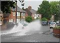TL4656 : Lichfield Road: high water in June by John Sutton