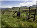 NC9517 : A gate in the deer fence by Neville Goodman