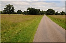 SJ5409 : Driveway in Attingham Park by Philip Halling