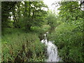 TL8980 : Little Ouse River by Geographer