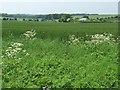 SU5426 : Looking west towards Warren Farm by Christine Johnstone